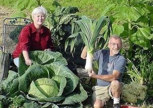 6 огородных секрета фото