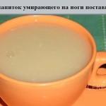 ЭЛИКСИР ЖИЗНИ фото