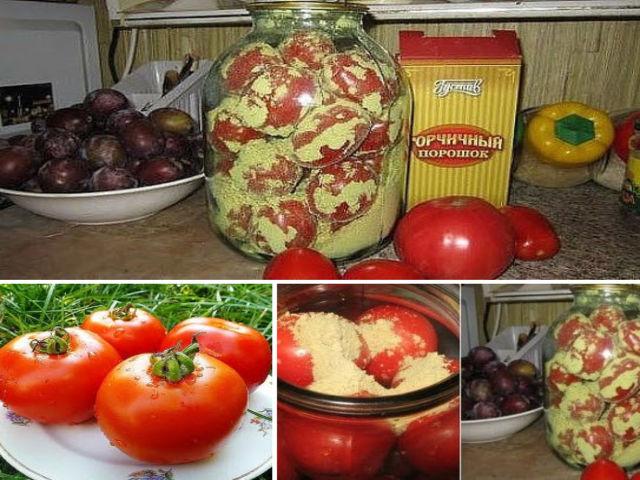 Как помидоры сохранить свежими на зиму в домашних условиях 719