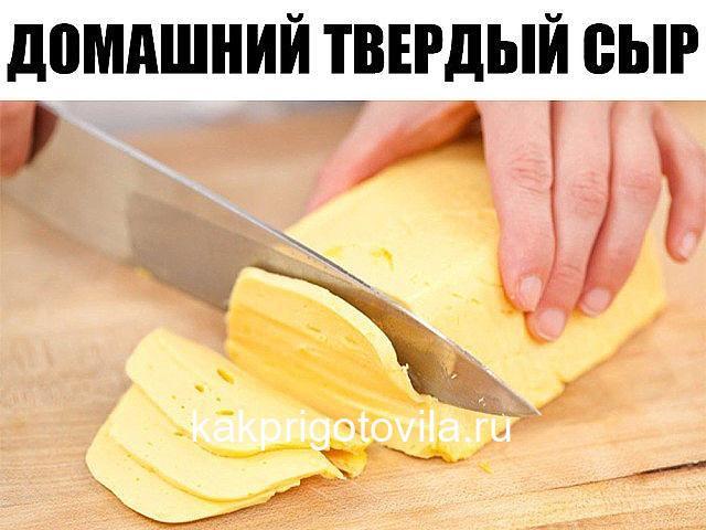 Домашний твердый сыр. Такой сыр можно смело давать малышу, ведь в нем не будет никаких ароматических добавок и красителей.
