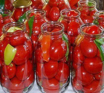 tarskie-pomidori-dlea-tarit-foto-333x300-1