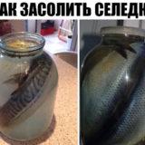 Наша семья уже давно не покупает соленую скумбрию или селедку в магазине, домашняя засолка намного вкуснее, да и безопастнее. Потрясающая рыбка получается! Хочется еще, и еще...