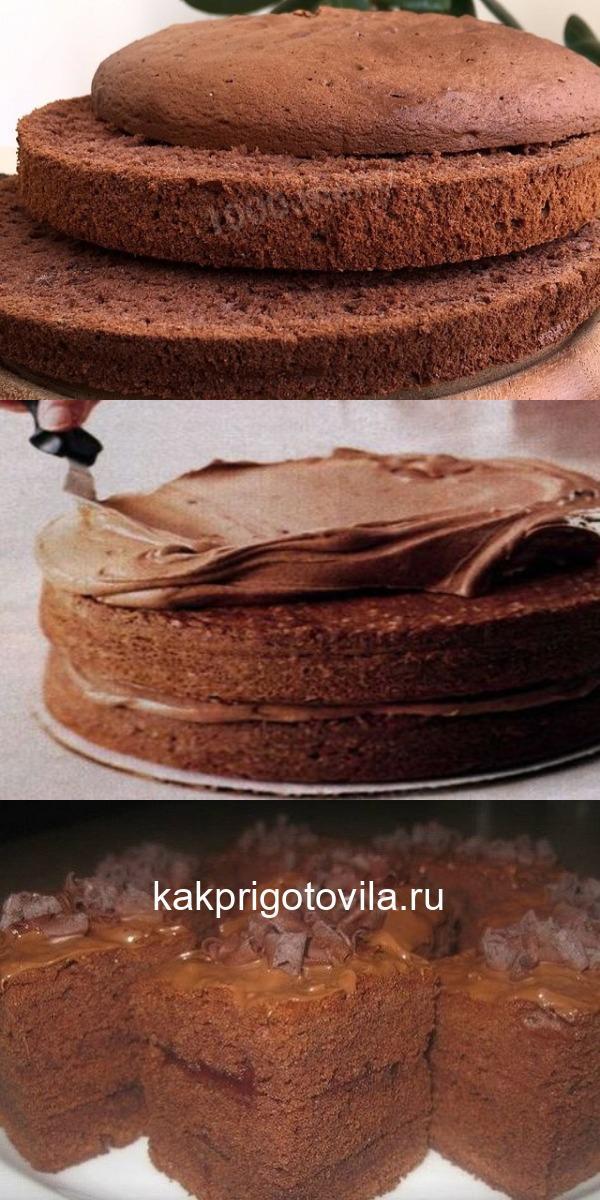 Шоколадный бисквит на своей кухне. Теперь я не буду бегать за ним в кафе!