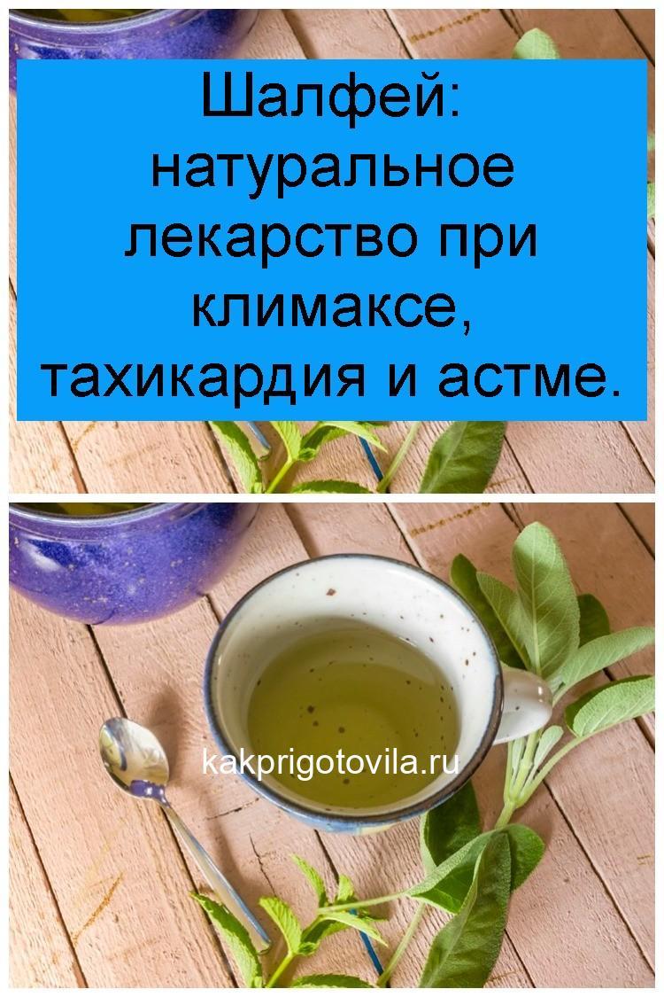 Шалфей: натуральное лекарство при климаксе, тахикардия и астме 4