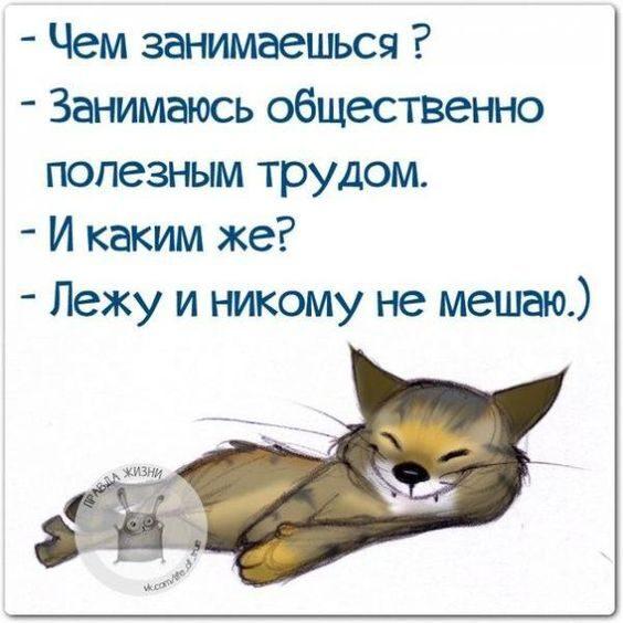 7337991829611f878b245cbb69d66e31