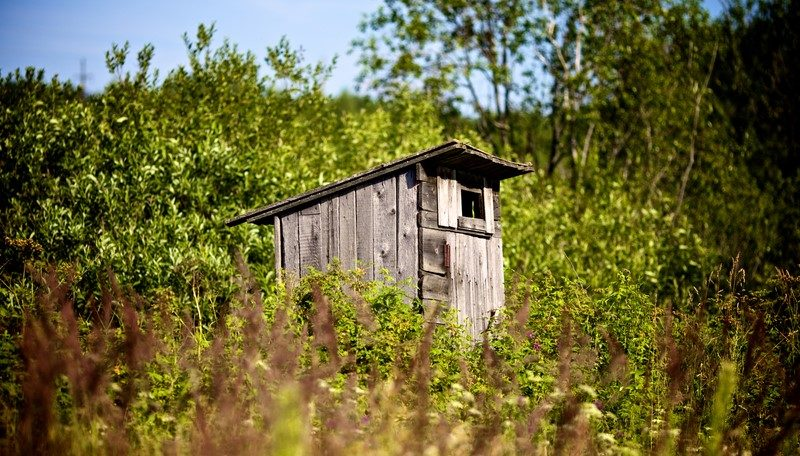 old-country-toilet-waiting-to-be-used-in-high-grass