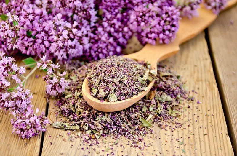 herbal-tea-of-fresh-and-dry-oregano-on-spoon-2