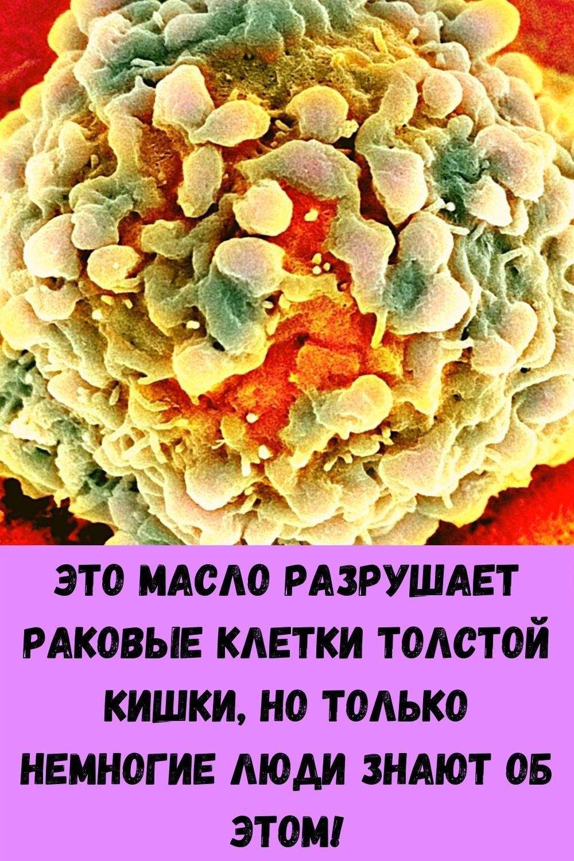 blagodarya-etomu-ovoschu-ya-vernul-sebe-zrenie-pochistil-pechen-i-pohudel-a-mne-uzhe-60-20