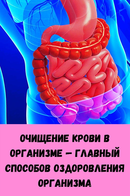 rezhim-priema-vody-dlya-pohudeniya_-po-chasam-i-s-rekomendatsiyami-pey-i-sbrasyvay-ves-1