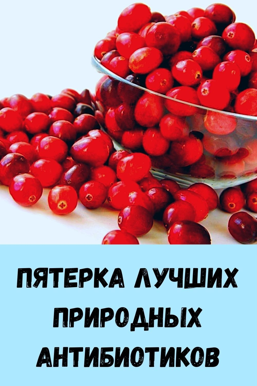 sindrom-venery_-kak-ubrat-zhirovye-podushki-na-bedrah-i-zhivote_-16-1
