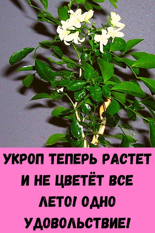teper-ya-zasypayu-za-1-minutu-vot-magicheskiy-tryuk-9