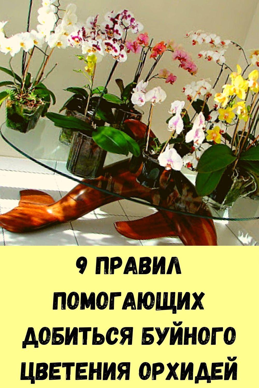 uznayte-kak-legko-i-bez-problem-otbelit-byustgalter-i-lyubuyu-beluyu-odezhdu-9