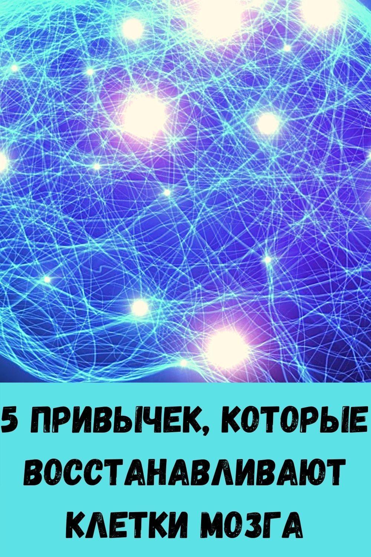 vashi-volosy-budut-tolstymi-krepkimi-i-blestyaschimi-esli-primenyat-eti-5-moschnyh-sredstv-100-uzhe-posle-3-5-primeneniy-14