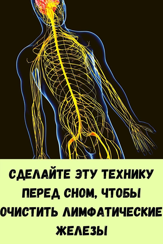 vy-budete-udivleny-tem-chto-vyydet-iz-vashego-kishechnika-eshte-etu-pischu-na-uzhin-3-dnya-17