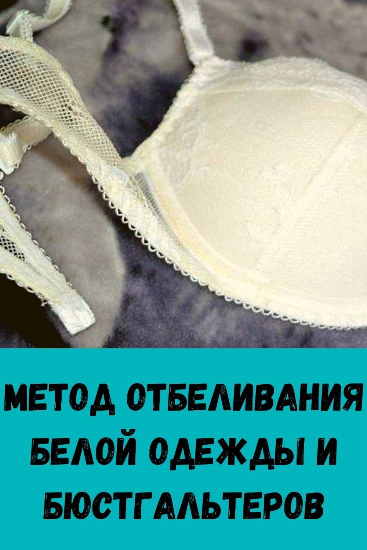zachem-hranit-lavrovyy-list-v-koshelke_-4