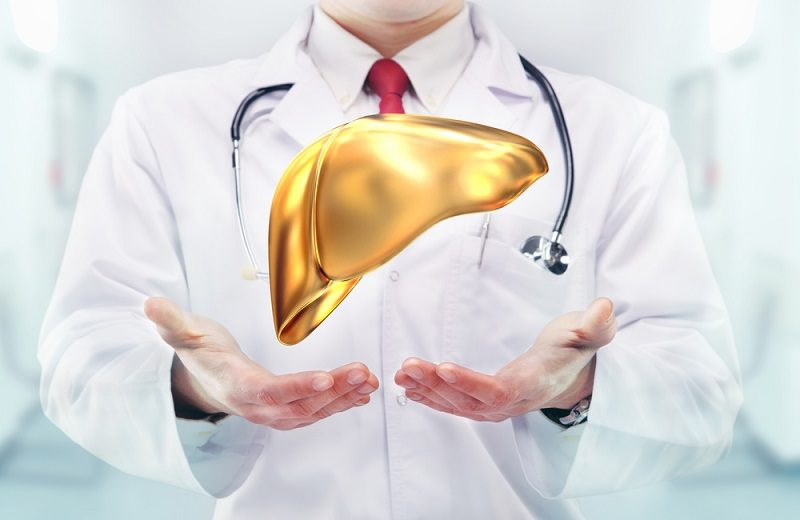 doctor-with-stethoscope-and-golden-liver-on-the-hands-in-a-hospital
