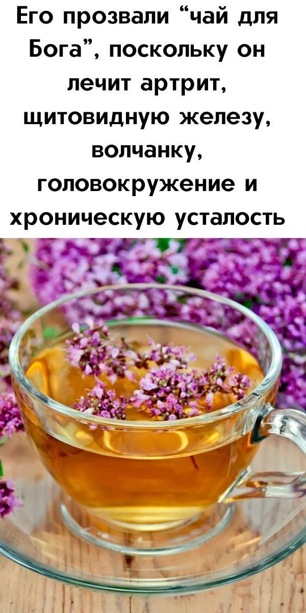 ego-prozvali-chay-dlya-boga-poskolku-on-lechit-artrit-schitovidnuyu-zhelezu-volchanku-golovokruzhenie-i-hronicheskuyu-ustalost-2