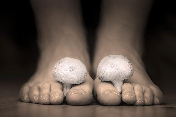 mushrooms-between-the-toes-feet-imitating-toes-fungus
