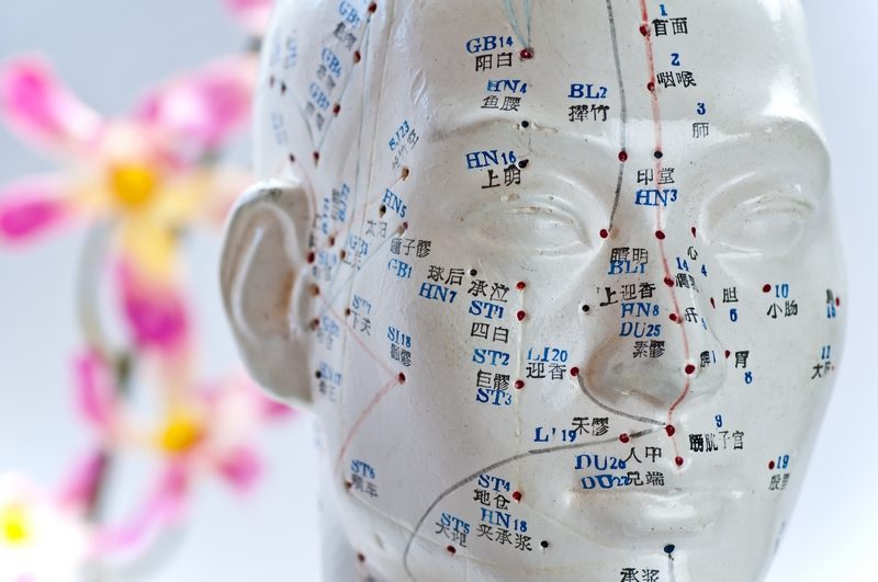 acupuncture-head-model-3