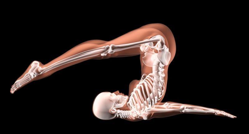 female-skeleton-in-yoga-position